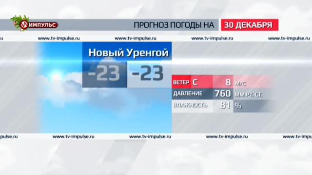Служба новостей. Выпуск от29декабря 2015г.
