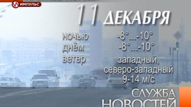 Служба новостей. Выпуск от10декабря 2013г.