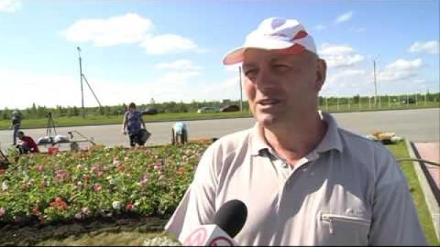 Работники МУП «Уренгойское городское хозяйство» приступили квысадке цветов.