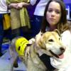 ВНовом Уренгое состоялся благотворительный марафон впомощь бездомным животным.