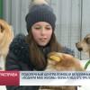 Подопечный центра помощи бездомным животным «Подари мне жизнь» попал под отстрел.