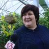 Новоуренгойские дорожники собрали урожай цитрусовых.