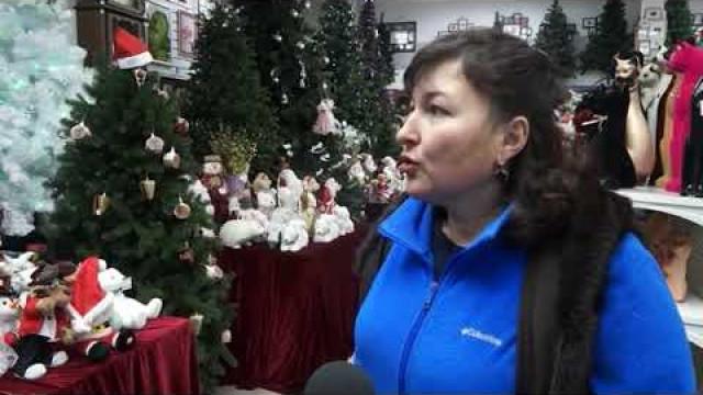 Продавцы раскрывают тайну правильного выбора новогодней ёлки.