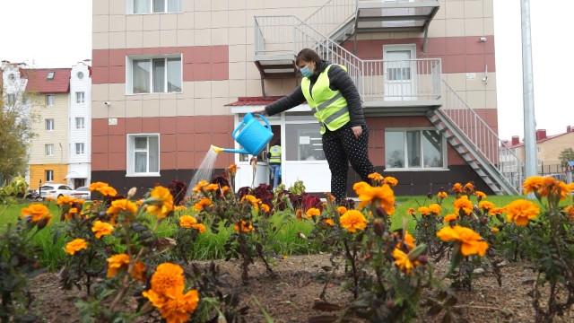 Подопечные центра «Ямал без наркотиков» трудятся наблаго себе иобществу