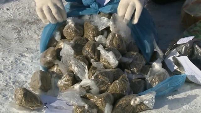 Новоуренгойские полицейские сожгли очередную партию наркотиков.