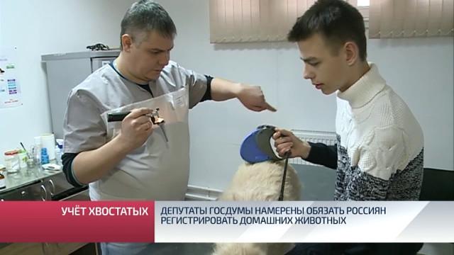 Депутаты Госдумы намерены обязать россиян регистрировать домашних животных.