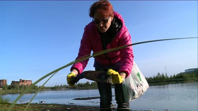 Экологическая акция «Чистый берег озера Молодежное» объединила горожан.