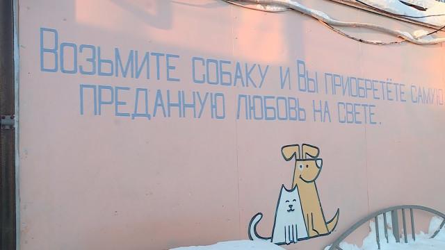 Андрей Воронов иобщественники обсудили проблемы лохматых беспризорников