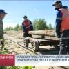 Учащимся ЧПОУ «Газпром техникум Новый Уренгой» предложили вступить встуденческий отряд.