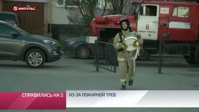 Служба новостей. Выпуск от13сентября 2019г.