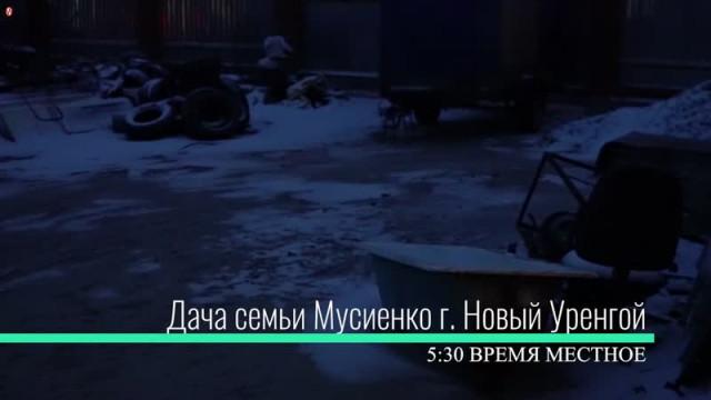 Курс наЯмал. Выпуск17.